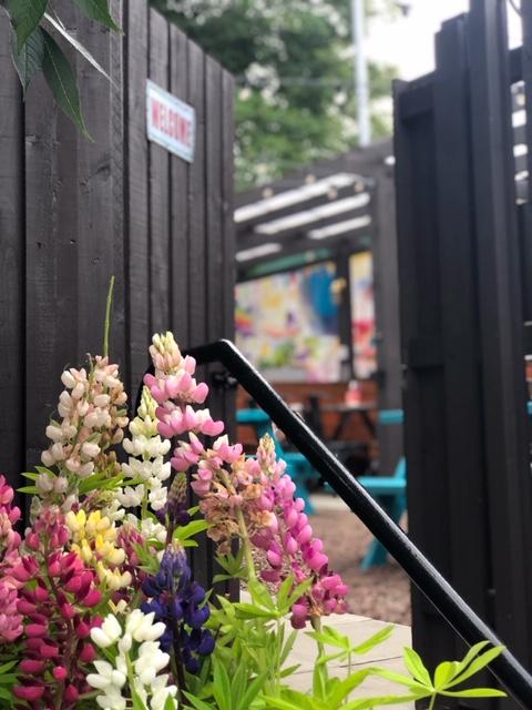 refurbished beer garden at the strathaven bar in strathaven